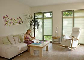 raumtextilienshop plauener spitze gardinen fensterbilder raffrollo cosiflor plissee faltstore. Black Bedroom Furniture Sets. Home Design Ideas
