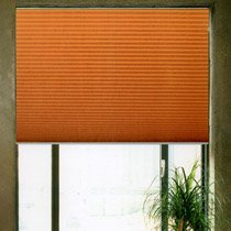 beispiele von cosiflor plissee faltstores raffrollo als. Black Bedroom Furniture Sets. Home Design Ideas
